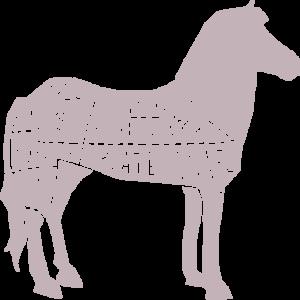cavallo-macelleria-equina-podesta
